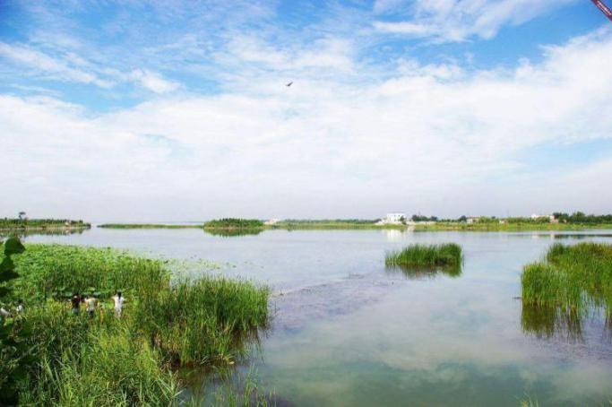 河北衡水湖富营养化综合治理项目